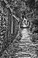 A man returns from shopping in Louveciennes, France.  His route is a tiny, wooded pathway that skirts a stone wall separating the path from residential backyards.  Aspect Ratio 1w x 1.5h