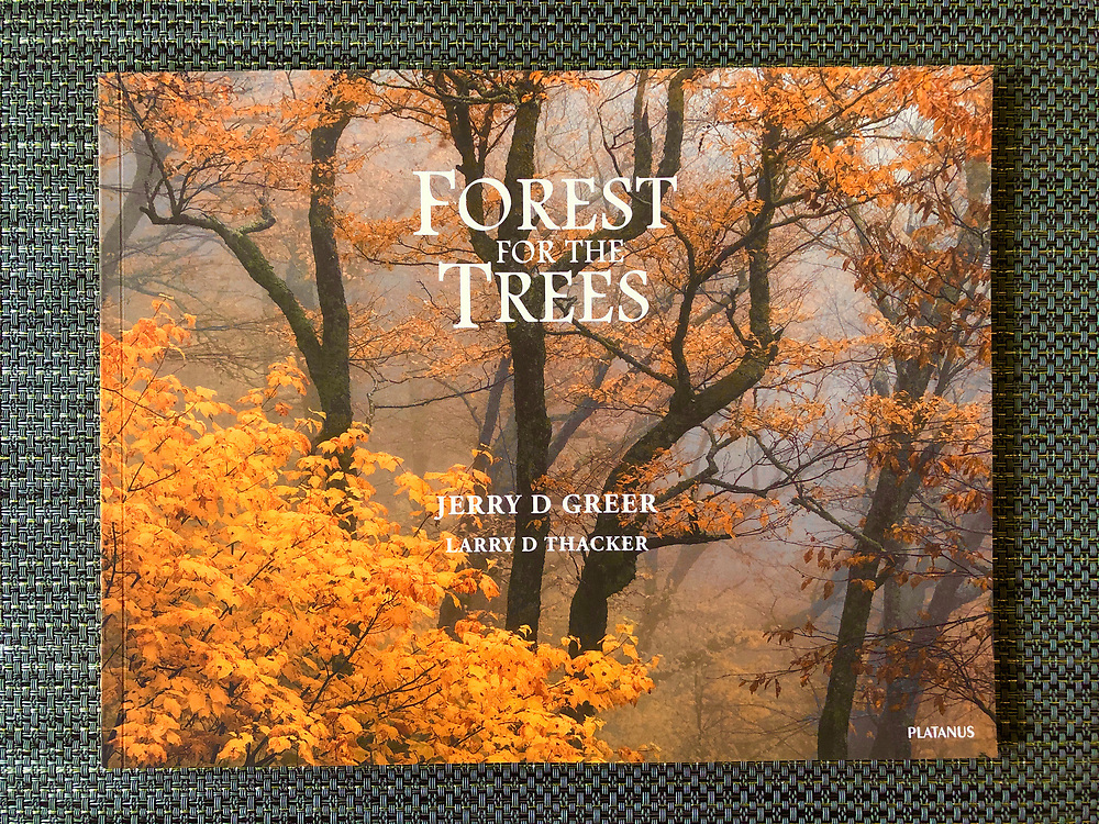 Forest for the Trees Book without print
