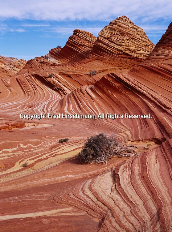 Cross-bedded beehive of colorful Navajo Sandstone, Vermilion Cliffs National Monument, Paria-Vermilion Cliffs Wilderness, Arizona.