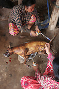 South East Asia, Cambodia, Phnom Penh. The dog's body is burnt to remove unwanted hair or blemishes<br /><br />Whilst some people eat dog meat, it is not commonplace. But it is a poorman's meat as it is a cheaper than beef, pork or chicken. The practice of hunting and catching stray dogs is common place, and sometimes even poaching domestic dogs. The Khmer prefer wild dog to 'farm' grown dogs. However the dogs are often treated inhumanely, and killed by strangulation or even boiled alive. It is thought by some that a dog filled with fear makes better meat. The animal is shaved and butchered. Favorite khmer dishes include dog paw curry and dog's head.<br /><br />Dog meat is eaten all over the world. An estimated 25 million dogs are eaten every year. For some societies eating dog is taboo, for others its acceptable.