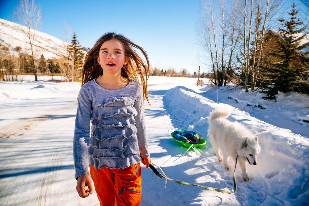Jade Goodrich walks home from the park with her sled and Samoyed in tow.