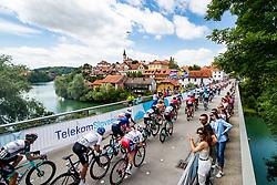 Peloton over Kandinjski bridge in Novo mesto during the 5th Stage of 27th Tour of Slovenia 2021 cycling race between Ljubljana and Novo mesto (175,3 km), on June 13, 2021 in Slovenia. Photo by Matic Klansek Velej / Sportida