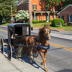 Amish buggies in Bird-in-Hand, PA