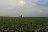 01: FARMS SOYBEAN FIELDS