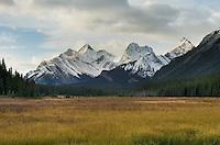 Peaks of the Spray Range from Smuts Creek wetlands, Peter Loughheed Provincial Park, Kananaskis Country, Alberta