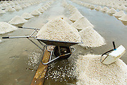 24 APRIL 2013 - SAMUT SONGKHRAM, SAMUT SONGKHRAM, THAILAND: A wheelbarrow full of salt in the salt fields of Samut Songkhram. The 2013 salt harvest in Thailand and Cambodia has been impacted by unseasonably heavy rains. Normally, the salt fields are prepped for in December, January and February, when they're leveled and flooded with sea water. Salt is harvested from the fields from late February through May, as the water evaporates leaving salt behind. This year rains in December and January limited access to the fields and rain again in March and April has reduced the amount of salt available in the fields. Thai salt farmers are finishing the harvest as best they can, but the harvest in neighboring Cambodia ended 6 weeks early because of rain. Salt has traditionally been harvested in tidal basins along the coast southwest of Bangkok but industrial development in the area has reduced the amount of land available for commercial salt production and now salt is mainly harvested in a small part of Samut Songkhram province.      PHOTO BY JACK KURTZ
