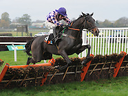 Wetherby Races 021113