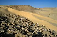 Desert, Isreal