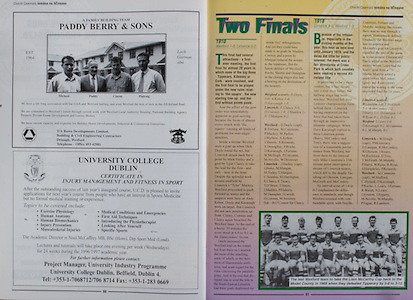 All Ireland Senior Hurling Championship - Final,.01.09.1996, 09.01.1996, 1st September 1996,.01091996AISHCF, .Wexford v Limerick,.Wexford 1-13, Limerick 0-14,.Paddy Berry and Sons, A Family Building Team, .University College Dublin,