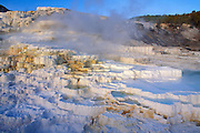 Morning light on Minerva Spring at Mammoth Hot Springs, Yellowstone National Park, Wyoming
