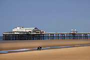 Empty beach with lone donkey in front of the pier during the pandemic on 21st April 2021 in Blackpool, Lancashire, United Kingdom. Blackpool is a large town and seaside resort in the county of Lancashire on the north west coast of England. Blackpool was once a booming resort with it's famous promenade which now, despite having a somewhat shabby appearance, still continues to attract millions of visitors each year. During the coronavirus pandemic however, Blackpool has struggled, with empty streets and closed down businesses creating an atmosphere more like a ghost town.