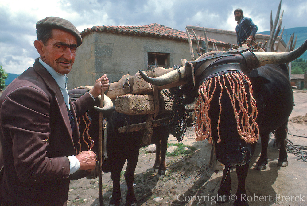 SPAIN, CASTILE and LEON San Miguel de Corneja, southwest of Avila; ox cart and men unloading firewood