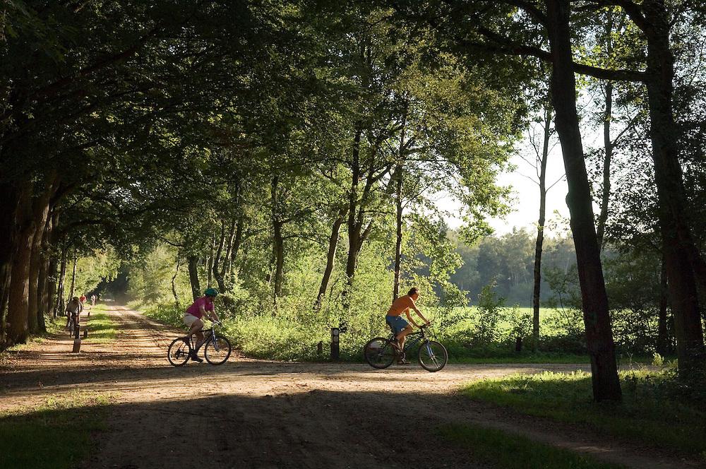 Nederland, Vorden, 21 sept 2006.Oefenterrein Het Groote Veld 1 t/m 6 te Vorden.Terrein wordt afgestoten door Defensie..Foto: (c) Michiel Wijnbergh