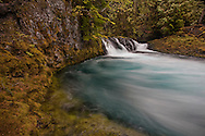 Scenes along the headwaters of the McKenzie River.