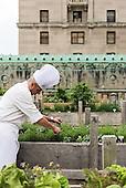 Toronto - Royal York Rooftop Garden