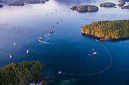 Aerial view of purse seine fishing boats, Sitka Sound, Sitka, Alaska, USA