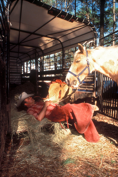 man taking a nap in a bed of horse's hay