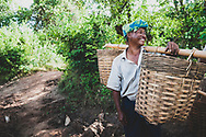 Kalaw, Myanmar (Burma) - November 3, 2011: A man working outside a village several kilometers west of Inle Lake, in Myanmar's Shan State, carries two baskets on a bamboo pole.