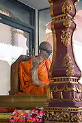 The Coolest Mummified Monk in the World<br />