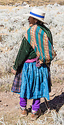 A campesino woman in blue skirt is a sheep herder. Day 7 of 9 days trekking around the Cordillera Huayhuash in the Andes Mountains, Peru, South America.