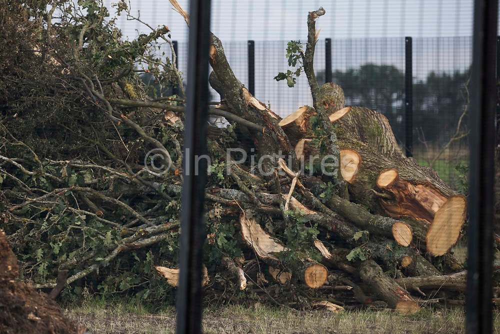 The remnants of a tree alongside Leather Lane, where two sections from a long row of hundred-year-old oak trees were felled in March and July 2021 for the HS2 high-speed rail link, are pictured on 3rd August 2021 in Great Missenden, United Kingdom. Over 40,000 people signed a petition in order to try to save the oak trees along the wildlife-rich ancient country lane situated in the Chilterns AONB.