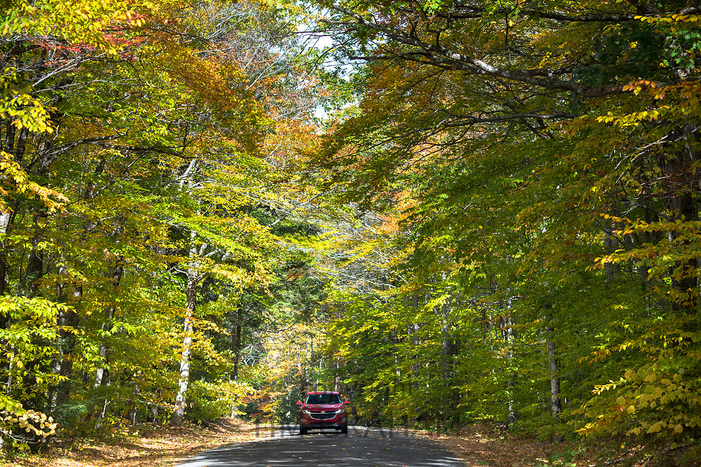 Touring in the White Mountains during The Fall, automobile on Thorn Hill Road, Jackson, New Hampshire, USA