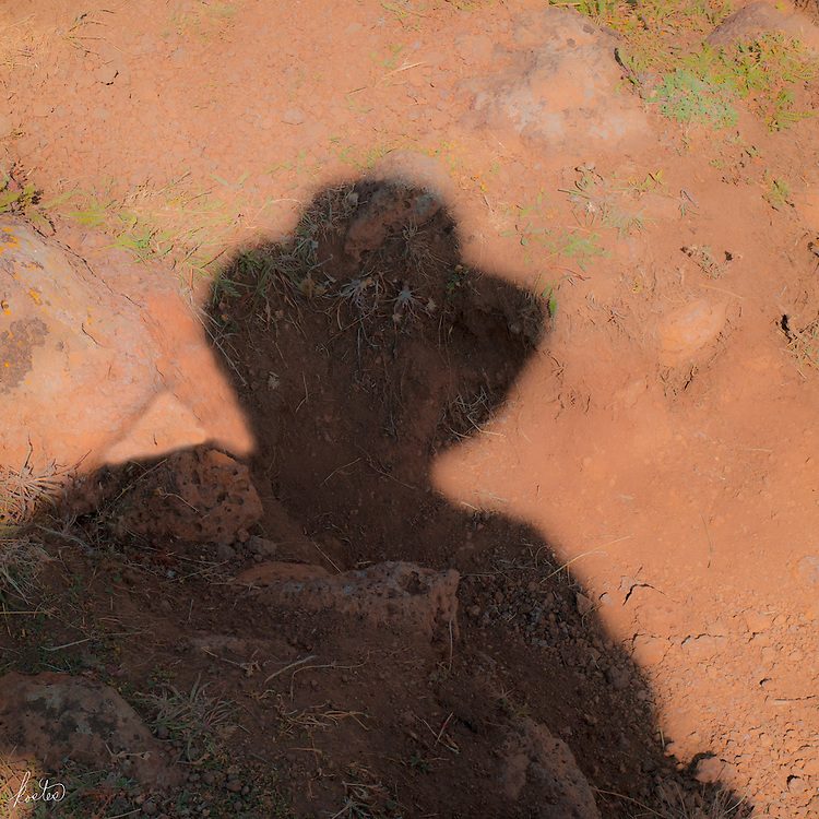 Self portrat of the artist in shadow.
