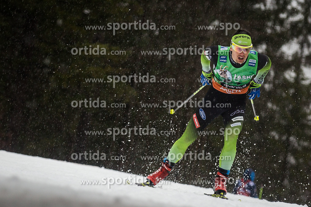 Miha Simenc (SLO) during the Ladies sprint free race at FIS Cross Country World Cup Planica 2019, on December 21, 2019 at Planica, Slovenia. Photo By Peter Podobnik / Sportida
