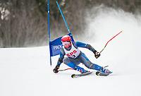 St Paul's School Lakes Region GS Championships at Proctor.  ©2019 Karen Bobotas Photographer