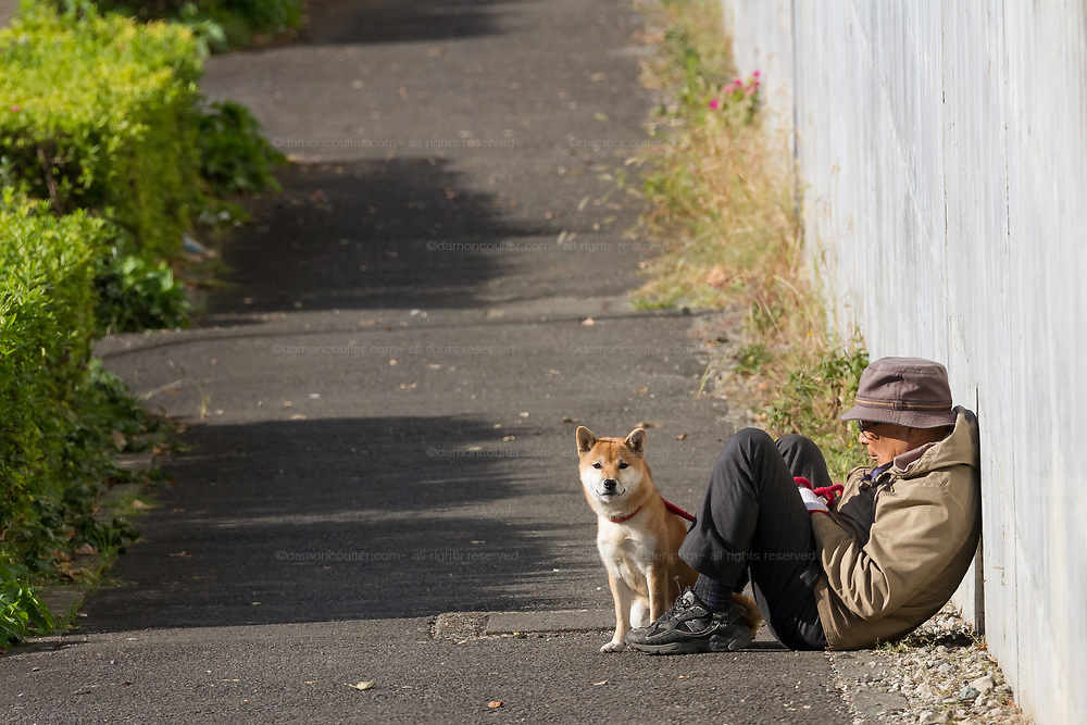 An older Japanese man sits to rest with his Shiba dog in the winter sunshine while out walking the dog.  Tsuruma, Kanagawa, Japan, Sunday November 22nd 2010