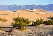 The Eureka Valley Sand Dunes