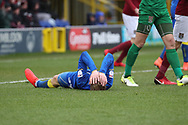 AFC Wimbledon striker Joe Pigott (39) with head in hands after miss during the EFL Sky Bet League 1 match between AFC Wimbledon and Northampton Town at the Cherry Red Records Stadium, Kingston, England on 10 February 2018. Picture by Matthew Redman.