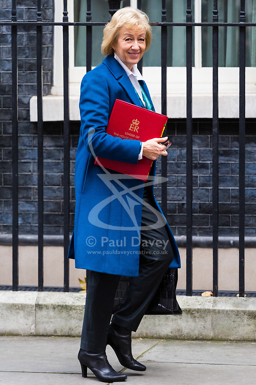 London, October 24 2017. Leader of the House of Commons Andrea Leadsom leaves the UK cabinet meeting at Downing Street. © Paul Davey