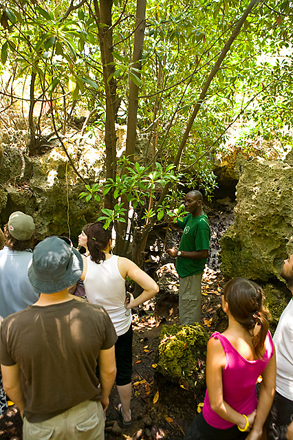 A ranger gives an interpretive talk about mangroves and island ecology at the edge of an intra-island tide pool, Chumbe Island Coral Park, Tanzania, Africa