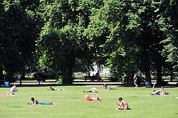 © Licensed to London News Pictures. 19/07/2016<br /> HEATWAVE WEATHER IN LONDON<br /> Today (19.07.2016) is set to be the hottest day of the year so far.  Heatwave weather in Greenwich Park,Greenwich,London.<br /> <br /> (Byline:Grant Falvey/LNP)