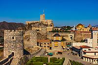 Grape vine of Rabati Castle landmark of Akhaltsikhe Samtskhe Javakheti region Georgia eastern Europe