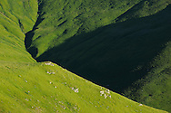 Alpine grasslands in the Tarku mountains Natura 2000 site, Southern Carpathians, Romania, Rewilding Europe site