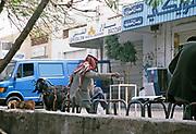 Man with goat drinking tea in street cafe, Aqaba, Jordan, 1998