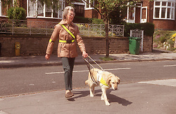 Woman with visual impairment crossing road with guide dog,