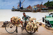 08 JUNE 2014 - YANGON, MYANMAR: A man with a bike load of chickens waits to board the ferry to Dala. The ferry to Dala runs continuously through the day between Yangon and Dala. Yangon, Myanmar (Rangoon, Burma). Yangon, with a population of over five million, continues to be the country's largest city and the most important commercial center.      PHOTO BY JACK KURTZ