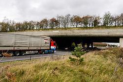 Terlet, Arnhem, Netherlands, wildviaduct, wildlife crossing