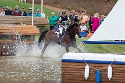 Klimke Ingrid, GER, Horseware Hale Bob<br /> World Equestrian Games - Tryon 2018<br /> © Hippo Foto - Dirk Caremans<br /> 15/09/2018