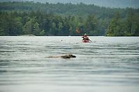 Kayaking on Lake Wicwas in Meredith.  ©2019 Karen Bobotas Photographer