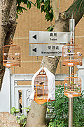 Exotic birds in bamboo cages hand from trees at the Yuen Po Street Bird Garden in Mong Kok, Kowloon, Hong Kong.