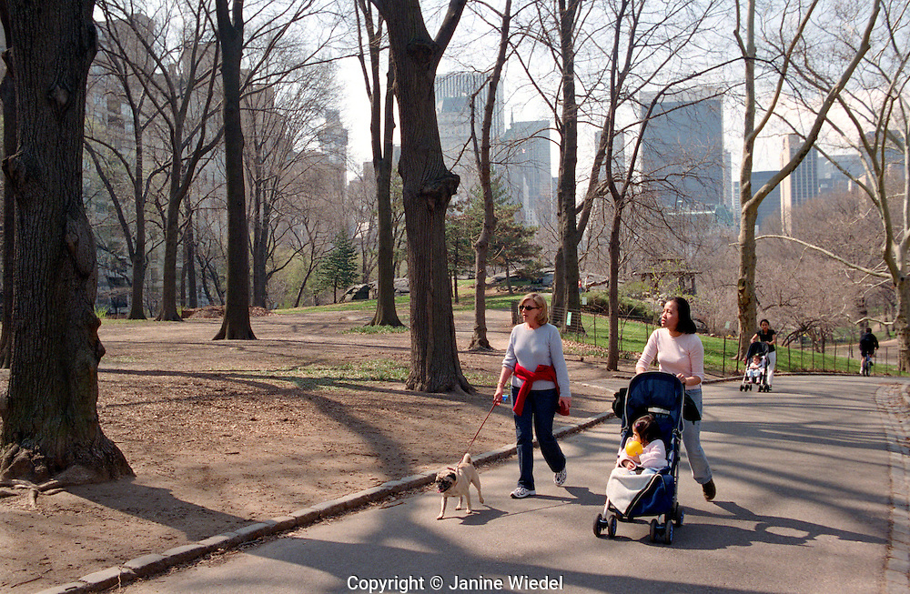 Two women meeting up in park to walk baby and dog.