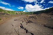 On the Kilauea Iki trail in the caldera, Hawaii Volcanoes National Park, Hawaii USA