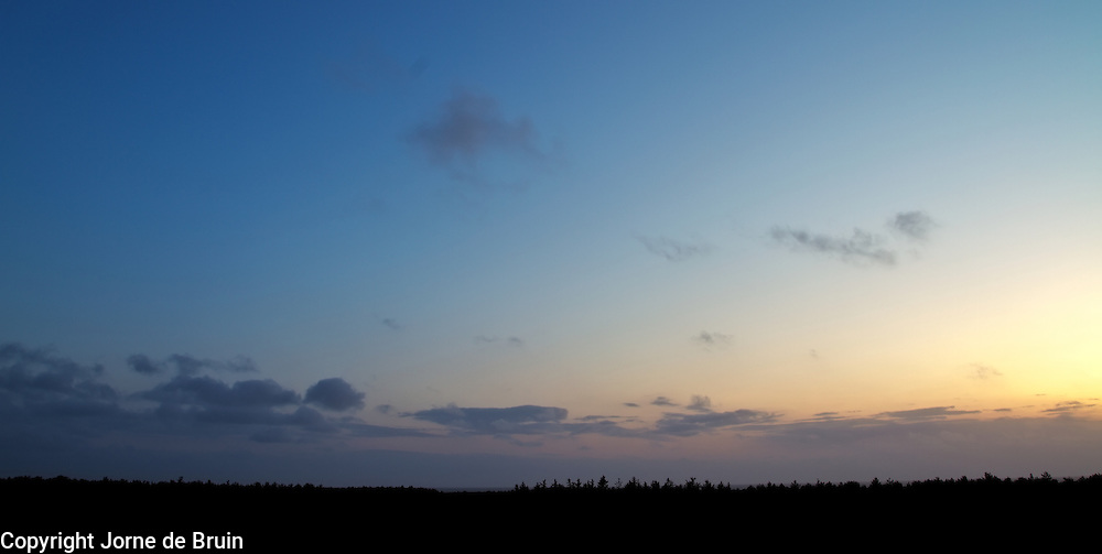 Sunset over a treeline on the island of Texel, the Netherlands.