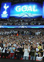 "Football - 2016 / 2017 Champions League - Group E: Tottenham Hotspur vs Monaco""<br /> <br /> Tottenham fans celebrate getting a goal back at Wembley Stadium<br /> <br /> <br /> Credit : Colorsport / Andrew Cowie"