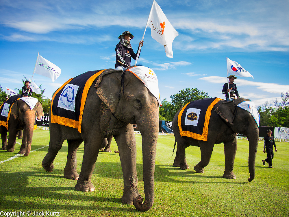 """29 AUGUST 2013 - HUA HIN, PRACHUAP KHIRI KHAN, THAILAND: Elephants take the field before the King's Cup Elephant Polo Tournament in Hua Hin. The tournament's primary sponsor in Anantara Resorts and the tournament is hosted by Anantara Hua Hin. This is the 12th year for the King's Cup Elephant Polo Tournament. The sport of elephant polo started in Nepal in 1982. Proceeds from the King's Cup tournament goes to help rehabilitate elephants rescued from abuse. Each team has three players and three elephants. Matches take place on a pitch (field) 80 meters by 48 meters using standard polo balls. The game is divided into two 7 minute """"chukkas"""" or halves. There are 16 teams in this year's tournament, including one team of transgendered """"ladyboys.""""    PHOTO BY JACK KURTZ"""