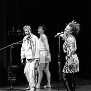 NLD/Huizen/19920516 - Optreden Meneer Kaktus in 3 in 1 Huizen